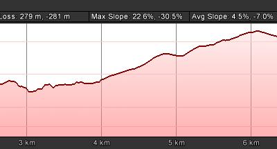 Leopard Trail Run