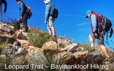 Garden Route Trail provides a great guide to walking the Leopard Trail