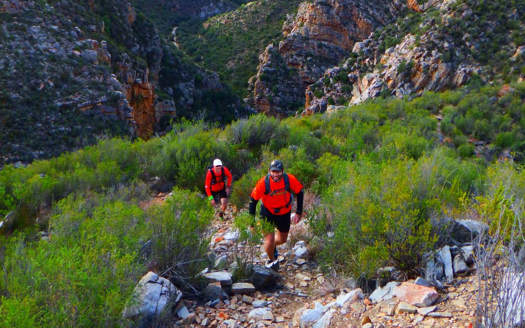 Trail Mag's Leopard Trail Run Review